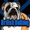 British Bulldog
