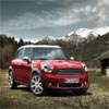Puzzles Mini Countryman 2011